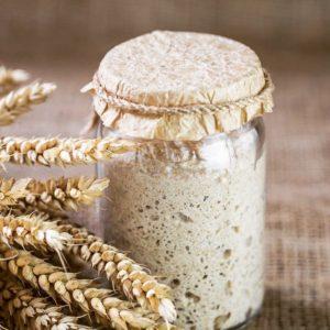 Выведение живой пшеничной закваски для хлеба